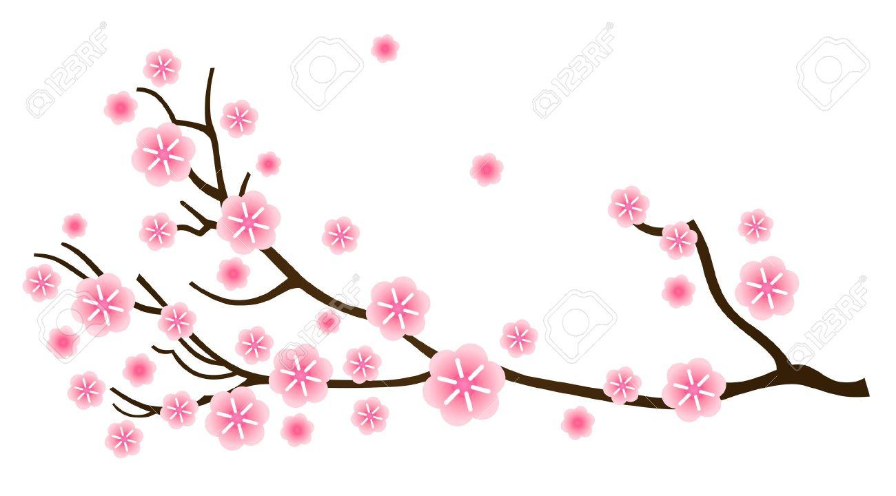 1300x720 Cherry Blossom Clipart Sakura Flower