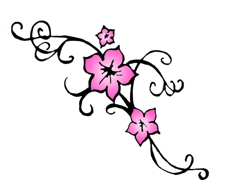736x643 34 Best Cherry Blossom Tattoo Drawings Images Black