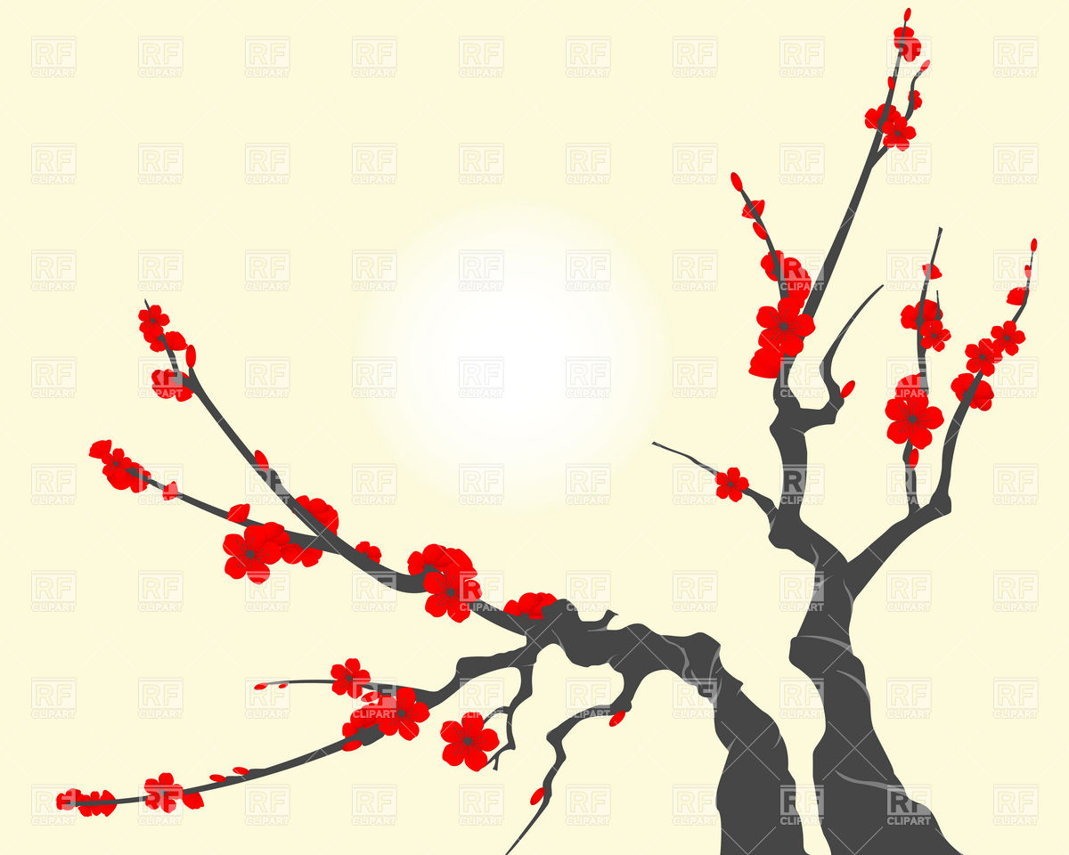 1200x960 Sakura Blossom Branch, With Cherry Flowers Royalty Free Vector
