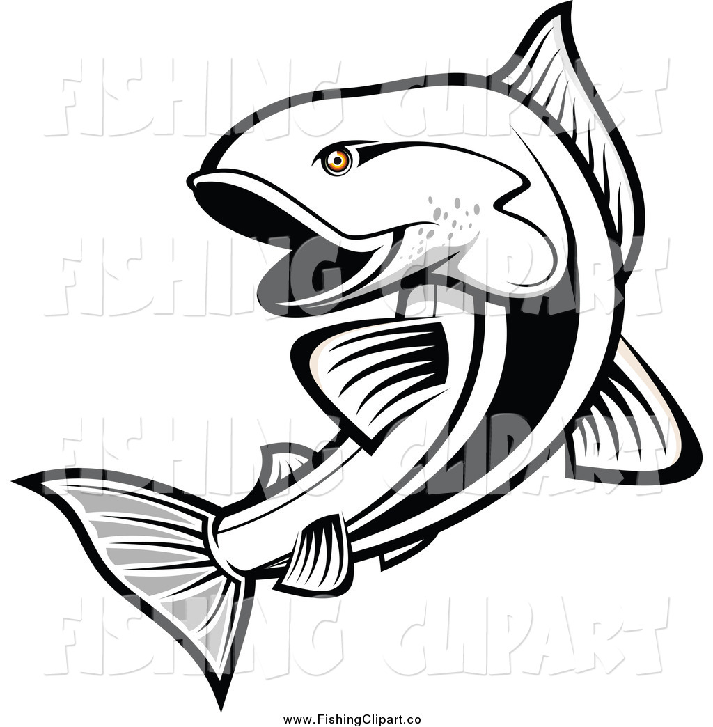 1024x1044 Royalty Free Trout Stock Fishing Designs