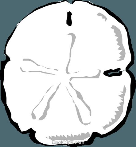 443x480 Sand Dollars Royalty Free Vector Clip Art Illustration Anim0566