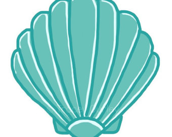 340x270 Turquoise Clipart Sand Dollar
