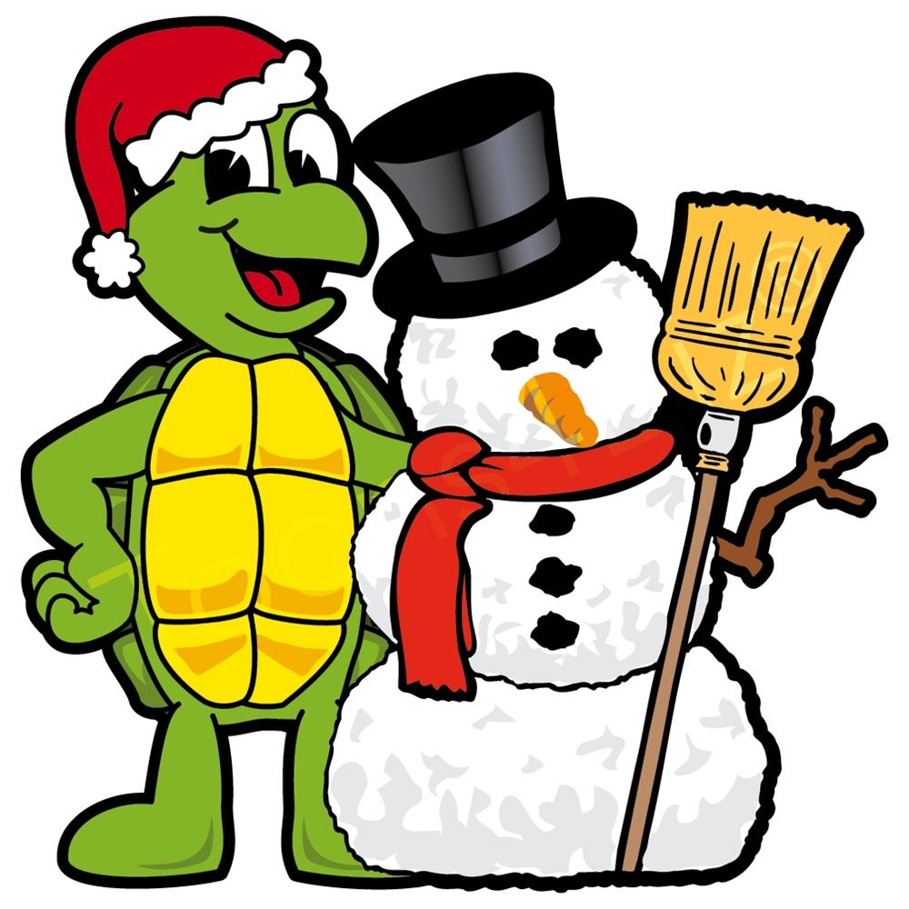 1000x1000 Turtle Clip Art For Christmas Fun For Christmas