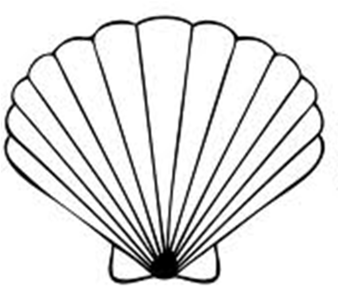667x597 Scallop Shell Clip Art