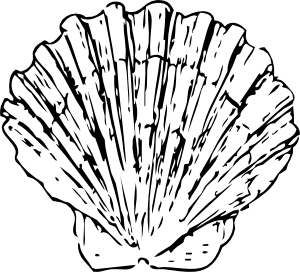 300x272 Scallop Shell Clip Art