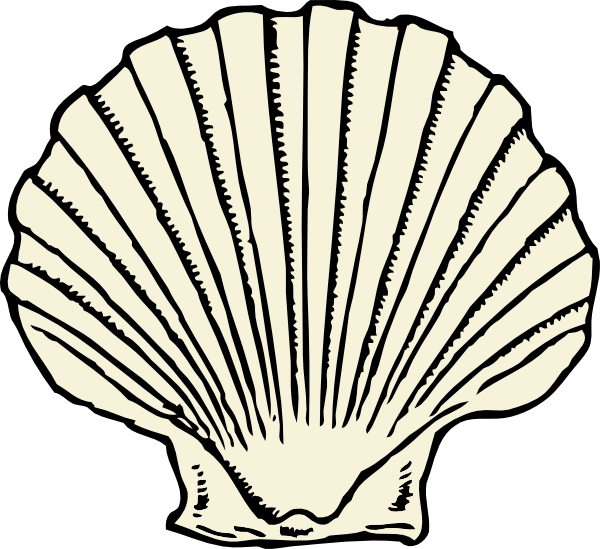 600x549 Scallop Shell Clip Art Free Vector 4vector