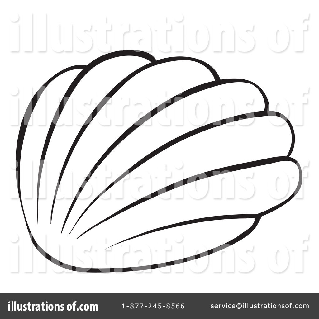 1024x1024 Seashell Clipart