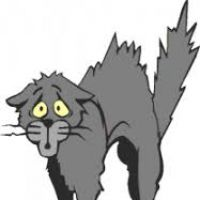 200x200 Scared Cat Clipart