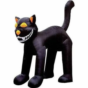 Scary Black Cat Pictures