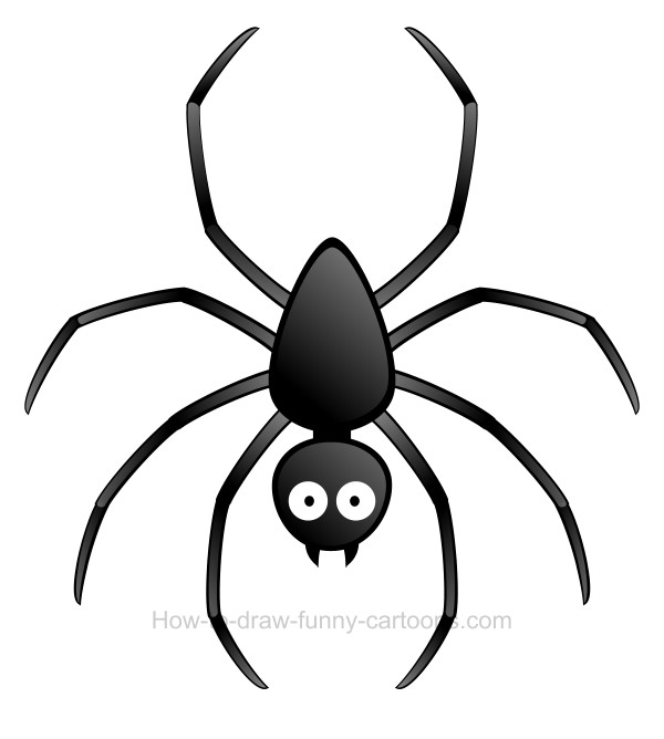 600x668 To Draw A Spider Clip Art