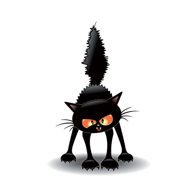 660x660 Free Vector Witch Scary Cat Scathing Floor Illustration 40104 Free