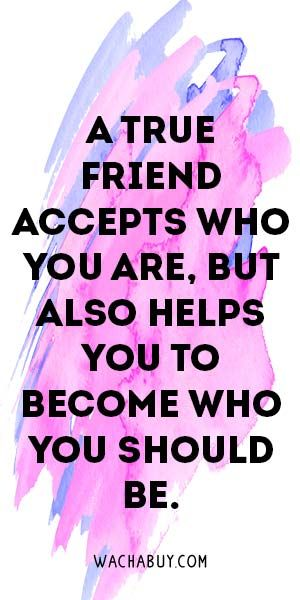 300x600 35 Inspiring Friendship Quotes For Your Best Friend Friendship