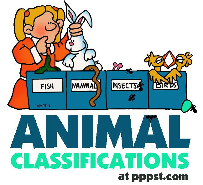 648x590 Animal Clipart Life Science