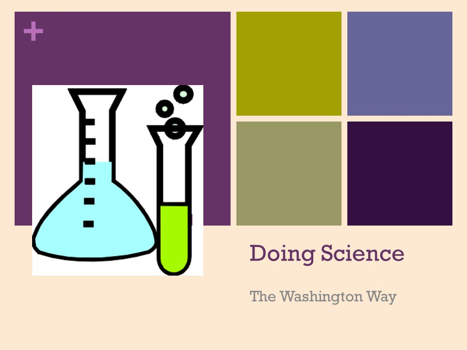 960x720 Doing Science The Washington Way. + What + Questionobservati