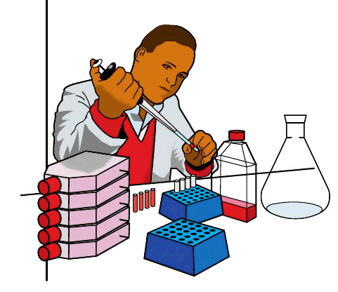 481x416 Best Science Lab Clipart