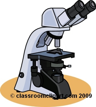 316x350 Microscope Clipart Microscope 7rb