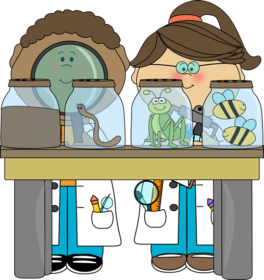 518x550 Best Science Lab Clipart