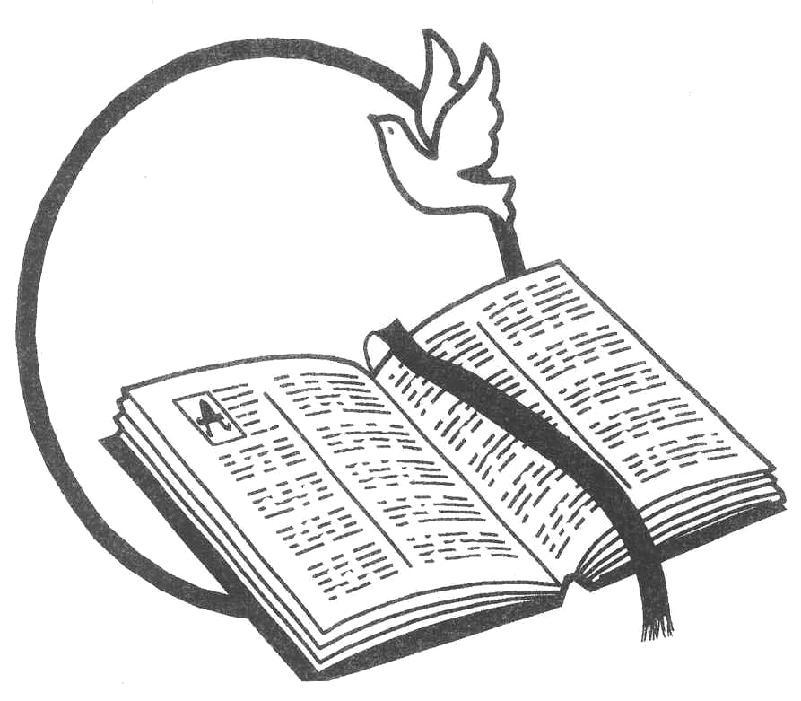 801x701 Peace Dove Clipart Bible
