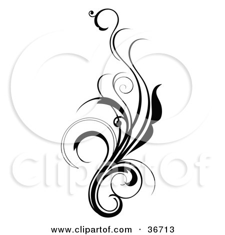 450x470 Clipart Illustration Of An Elegant And Curly Black And White