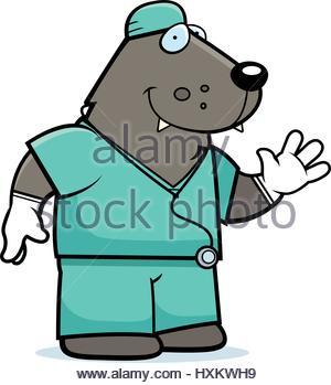 300x349 A Cartoon Illustration Of An Dog Doctor In Scrubs Stock Vector Art