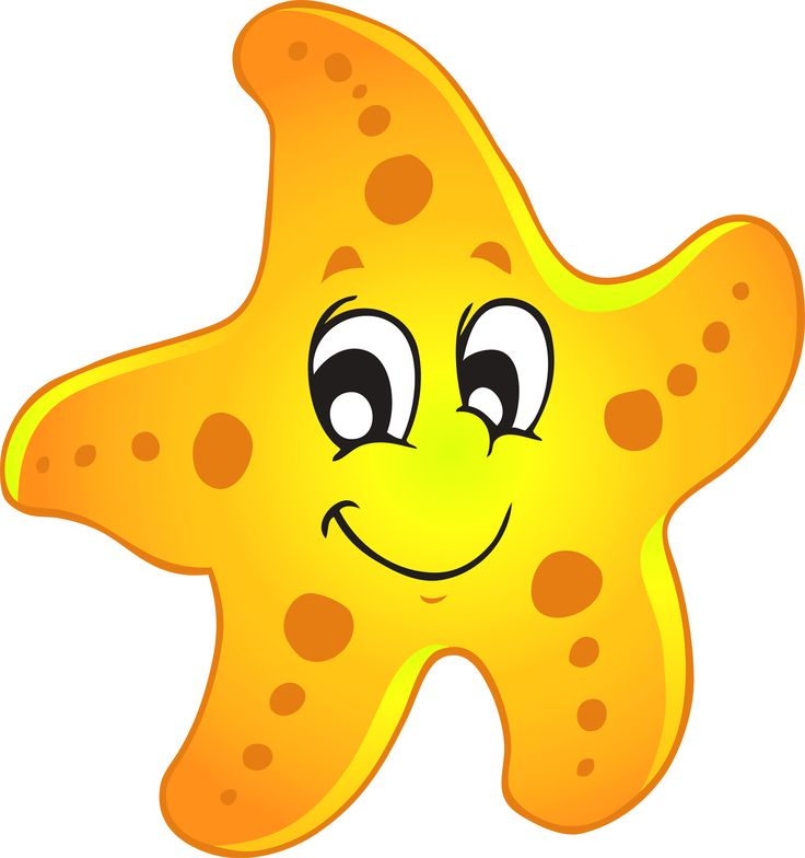 736x784 The Best Starfish Clipart Ideas Seahorse Image