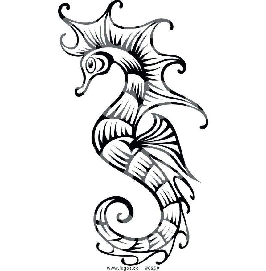 863x880 Seahorse Fish Outline Coloring Page Clipart Picture Of Seahorse