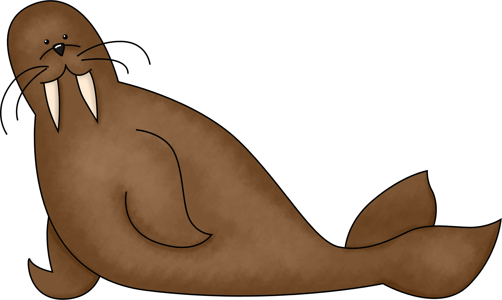 1601x958 Sea Lion Clipart Arctic Seal