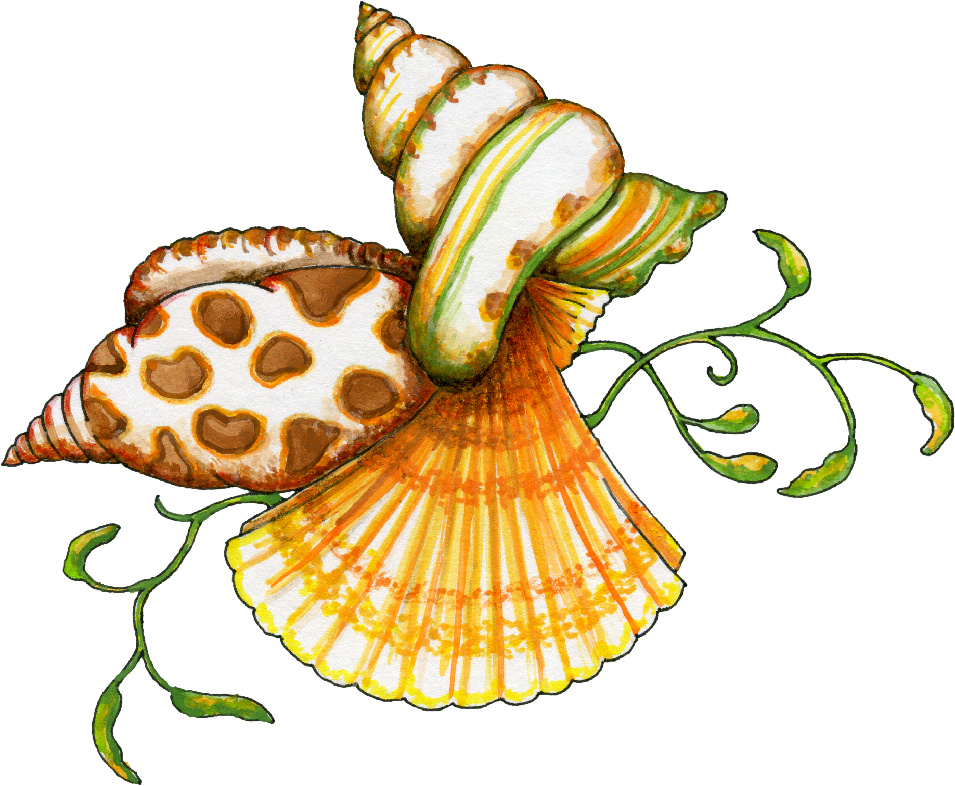 Sea Shells Cartoon | Free download on ClipArtMag