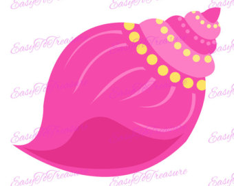 340x270 Conch Shells Clipart Etsy
