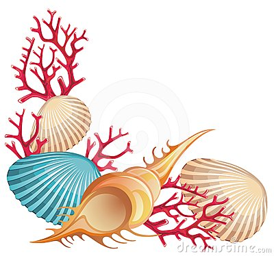 400x374 Sea Shell Scorpian Spider Conch Sea Shells Art