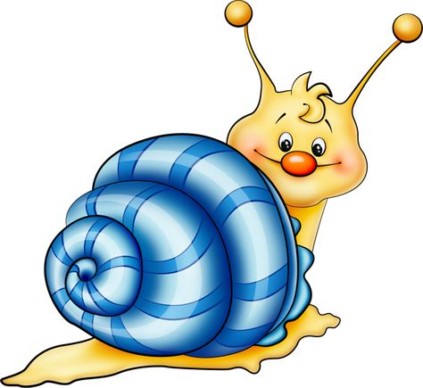 Sea Snail Clipart