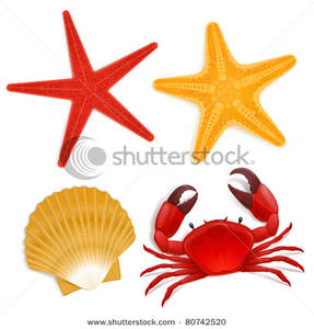 287x300 Picture Summer Sea Life Creatures, Star Fish, Shell, Red Crab