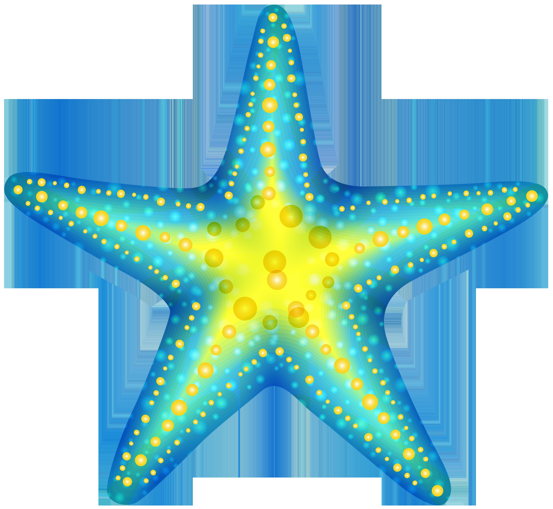 6000x5530 Top 83 Sea Star Clipart