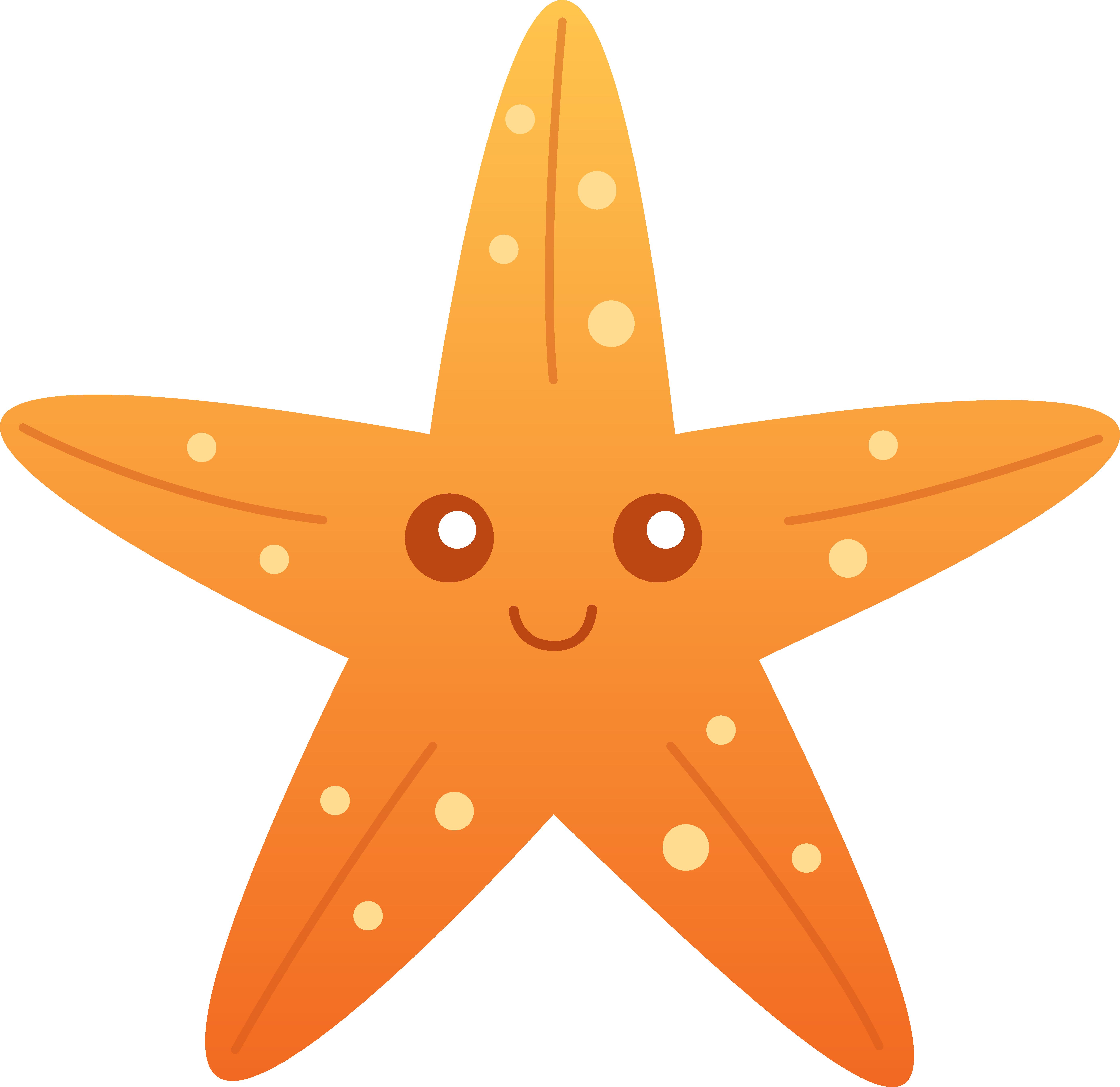 5546x5381 Cute Orange Starfish