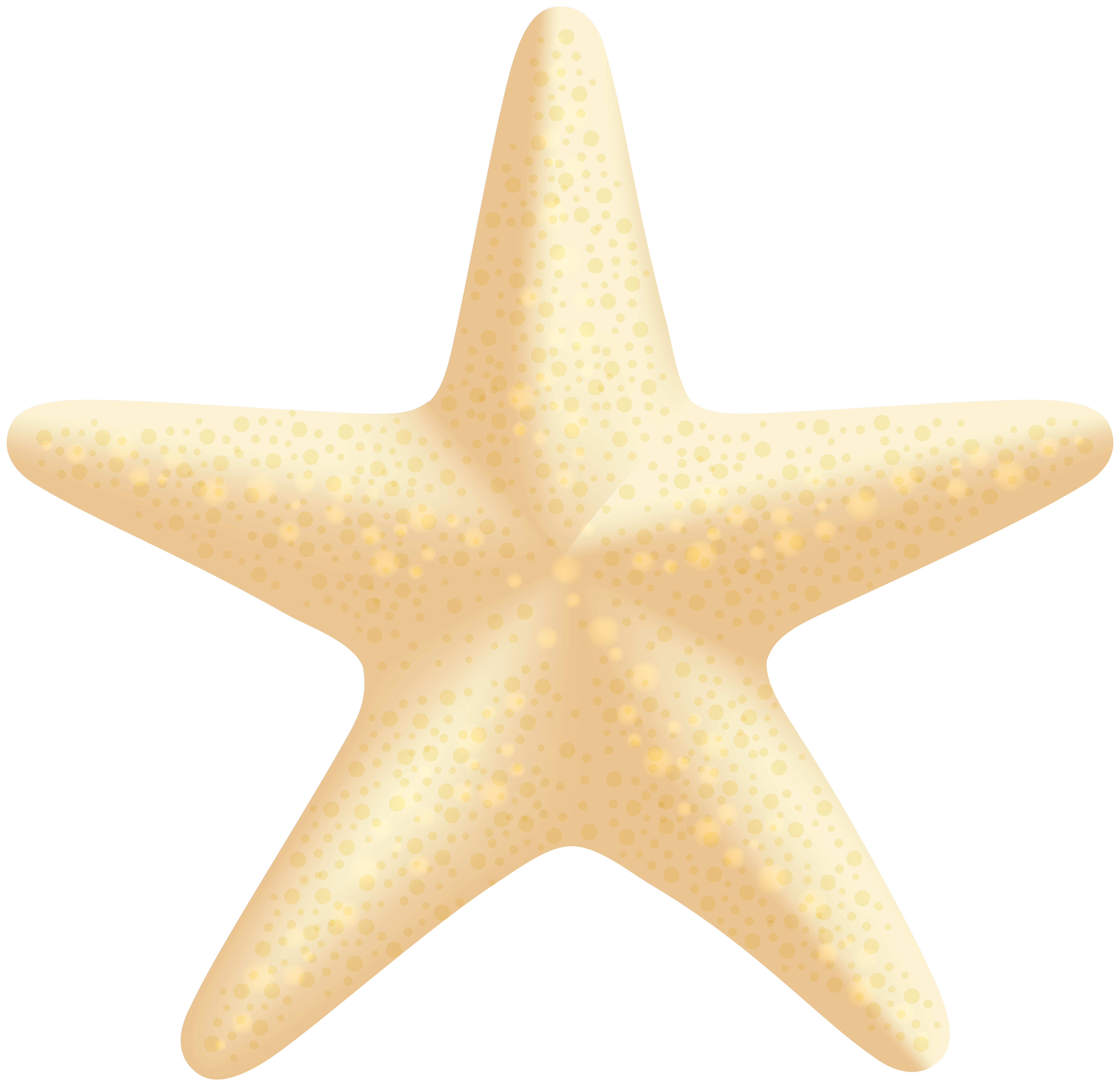 8000x7752 Sea Star Png Clip Art Imageu200b Gallery Yopriceville