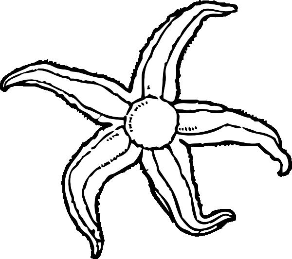 600x533 Starfish Clip Art