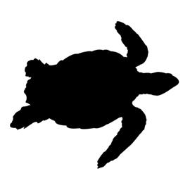 270x270 Sea Turtle Silhouette Stencil Free Stencil Gallery