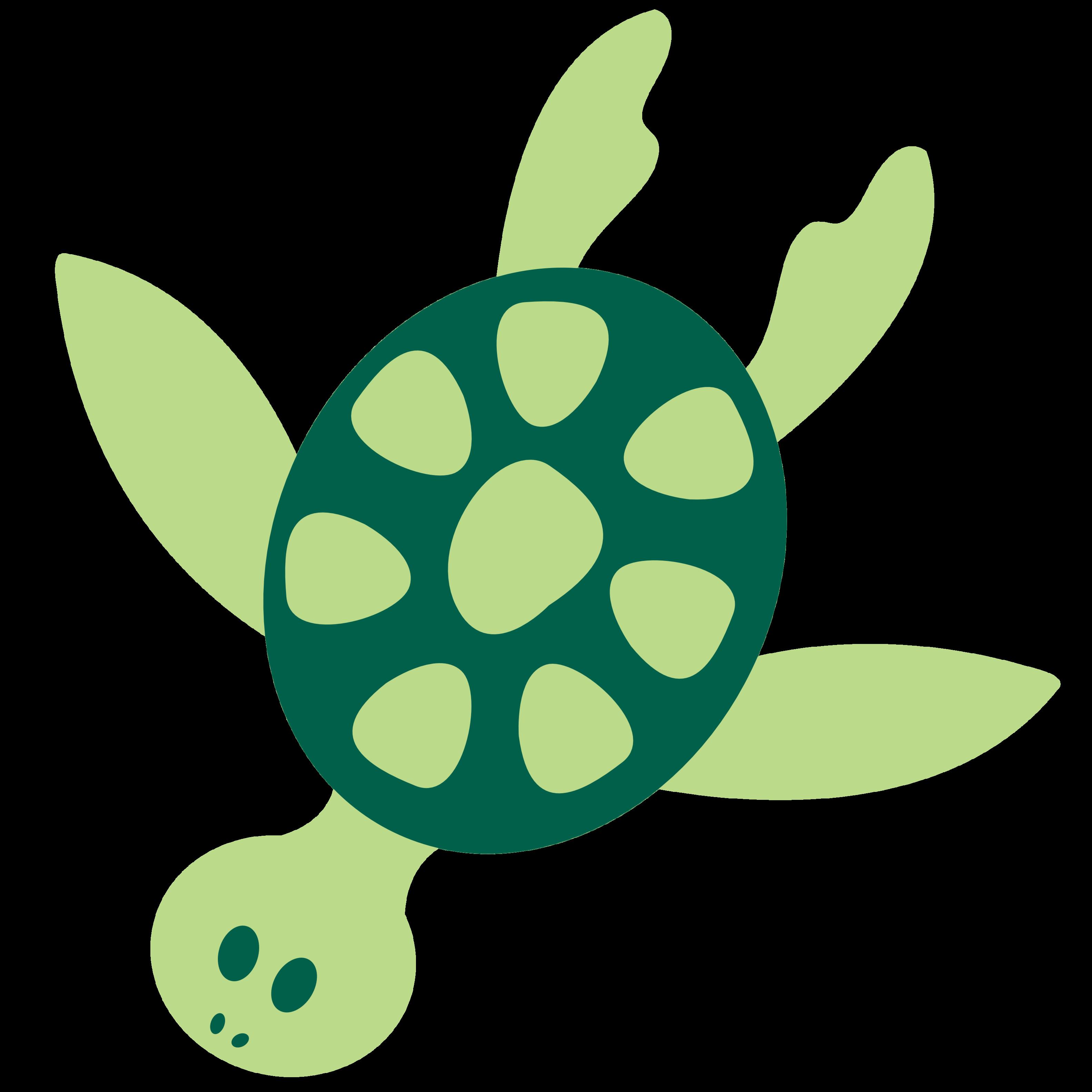 3166x3166 Clip Art Sea Turtle Clipart Stonetire Free Images