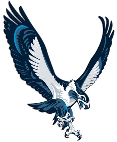 394x480 56 Best Seahawk Tattoo's Images Coloring, American