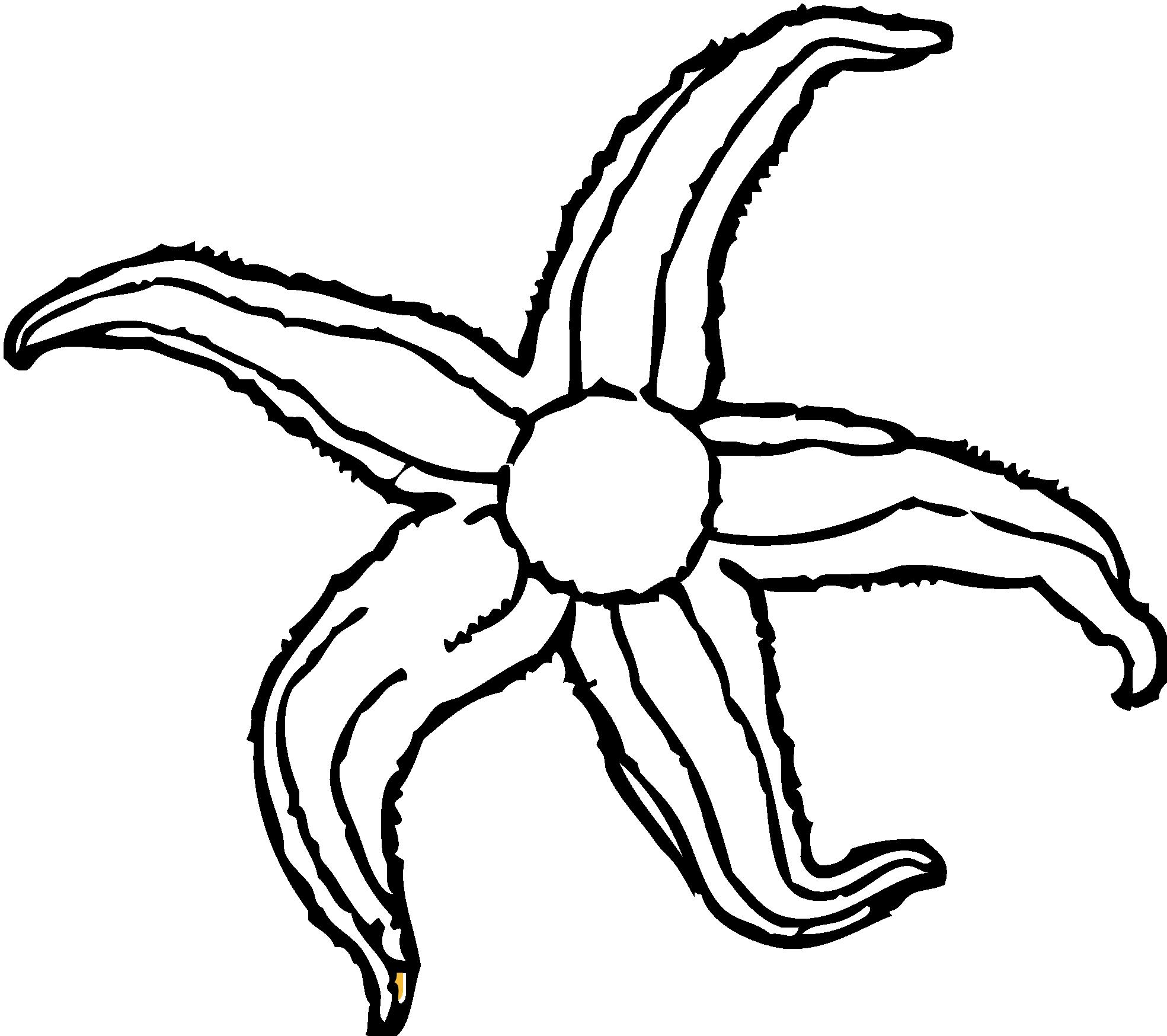 1969x1748 Starfish Clipart Black And White Clipart Panda
