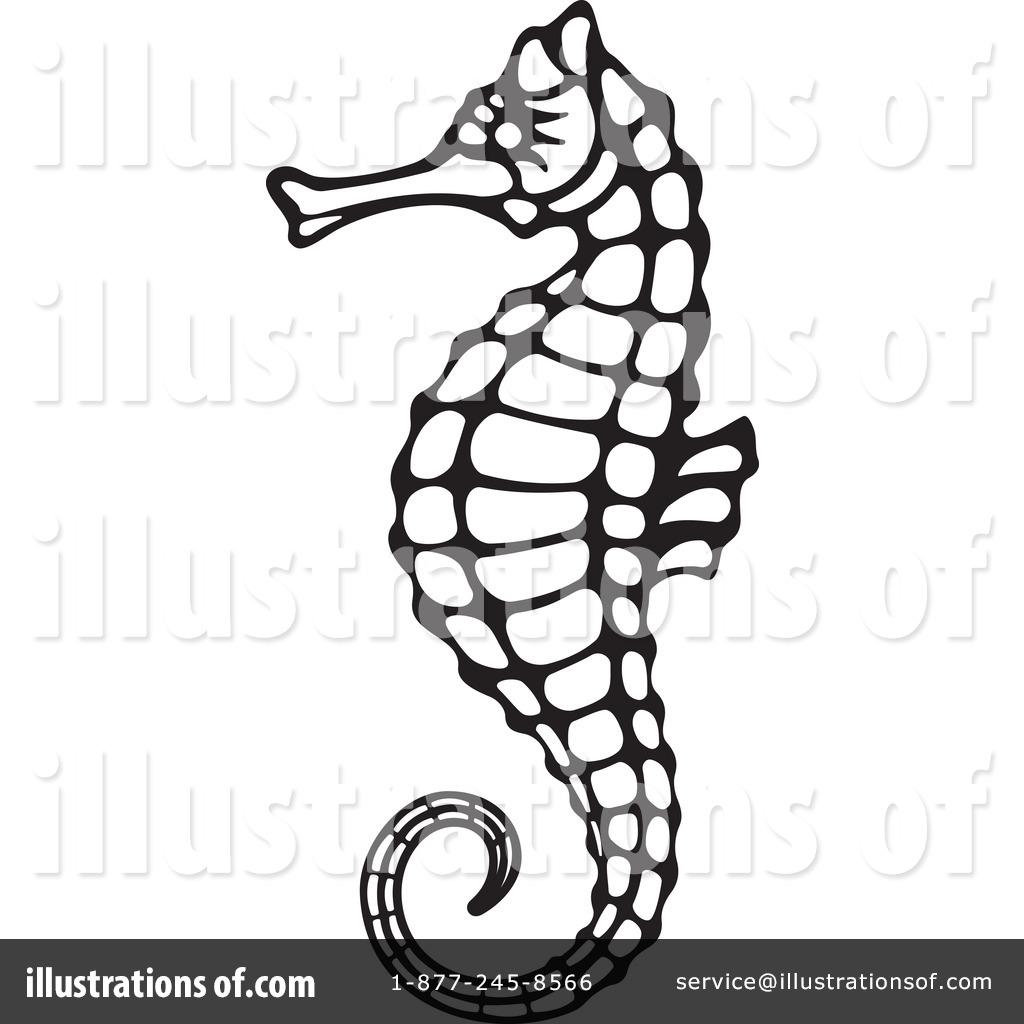 1024x1024 Seahorse Clipart