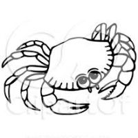 200x200 Seahorse Clipart Black And White