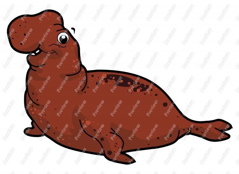 800x582 Elephant Seal Character Clip Art