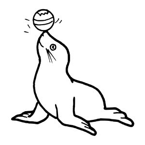 Seal Outlines