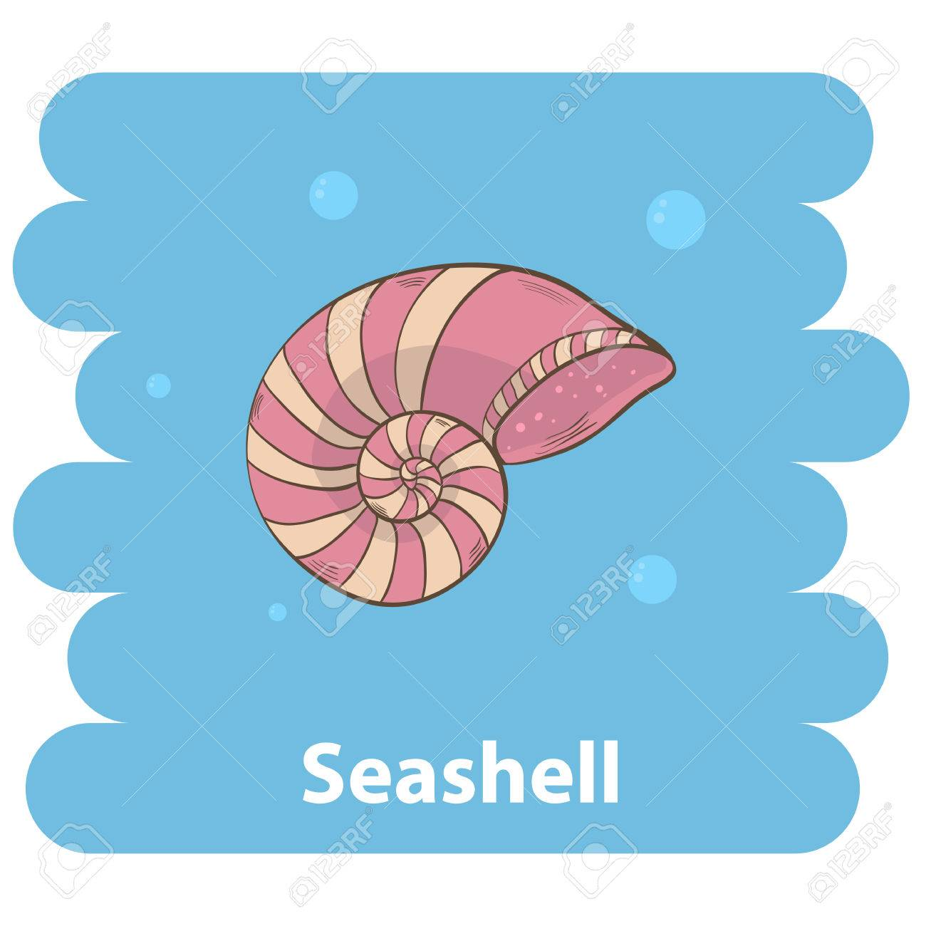 1300x1300 Seashell.cartoon Seashell Vector Illustration.cartoon Animal