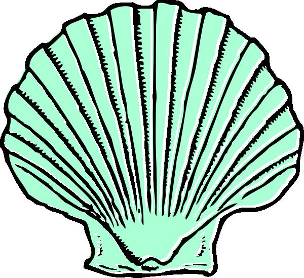 600x549 Aqua Seashell Clip Art