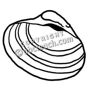 Seashell Clipart Black And White