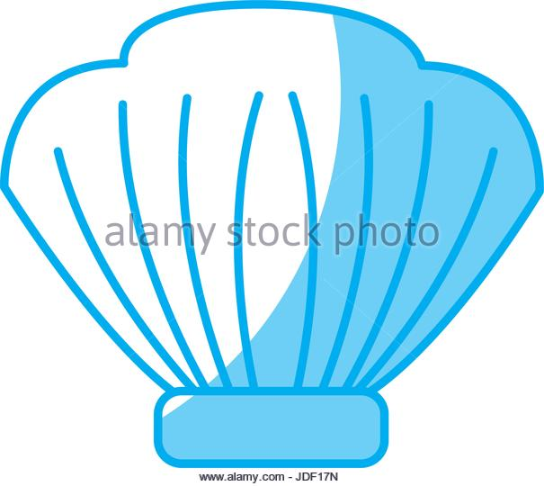 605x540 Water Seashell Underwater Wildlife Stock Photos Amp Water Seashell