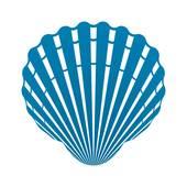 170x170 Clip Art Of Scallop Seashell. Vector. K14324917