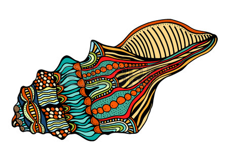 450x300 Shell, Zentangle Patterned Seashell, Black And White Page